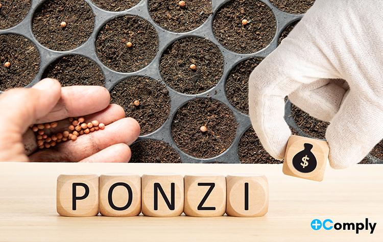 Estafas Ponzi Mediante Empresas Fachada que Comercializan Materias Primas